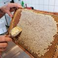 Honigschleudern_03